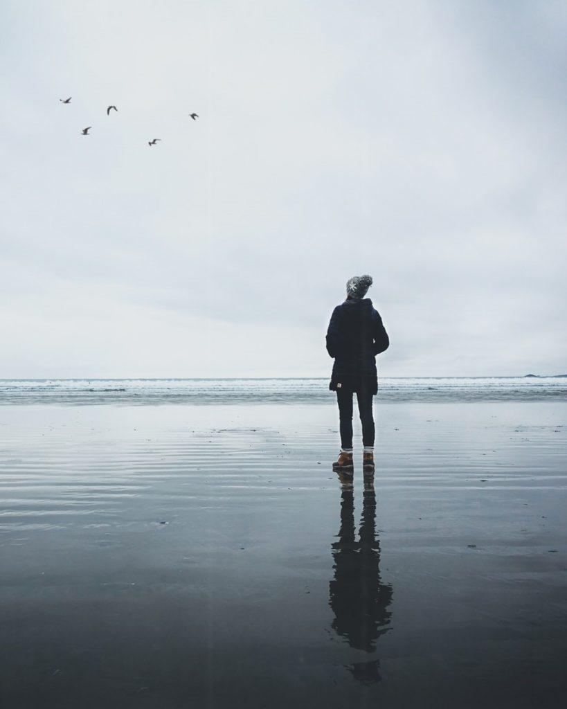 Persona en la playa viendo pájaros.
