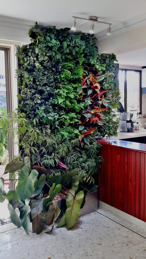 Razones para tener un jardín vertical